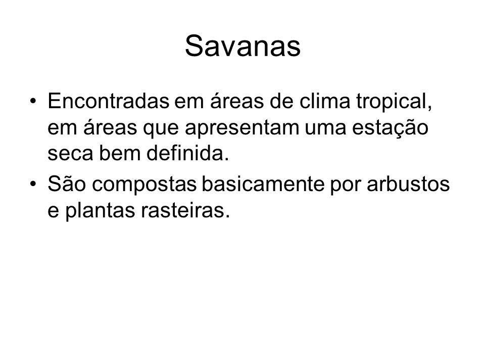 Savanas Encontradas em áreas de clima tropical, em áreas que apresentam uma estação seca bem definida.