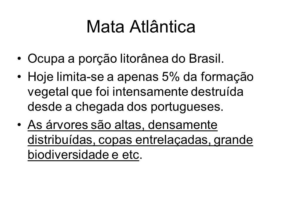 Mata Atlântica Ocupa a porção litorânea do Brasil.