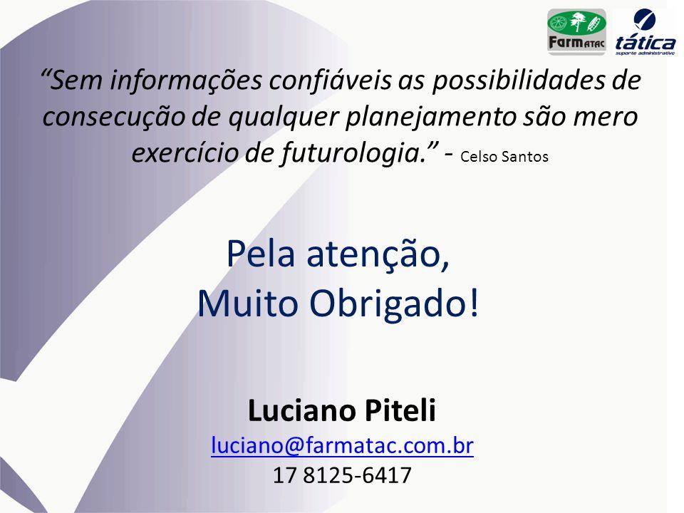 Pela atenção, Muito Obrigado! Luciano Piteli