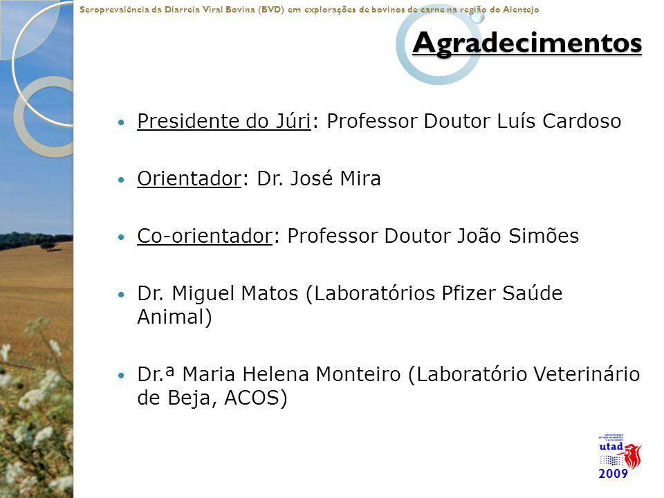 Agradecimentos Presidente do Júri: Professor Doutor Luís Cardoso
