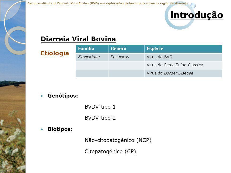 Introdução Diarreia Viral Bovina Etiologia Genótipos: BVDV tipo 1