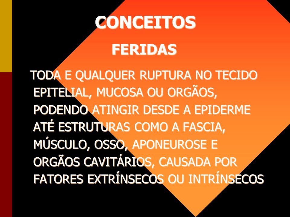 CONCEITOS FERIDAS.