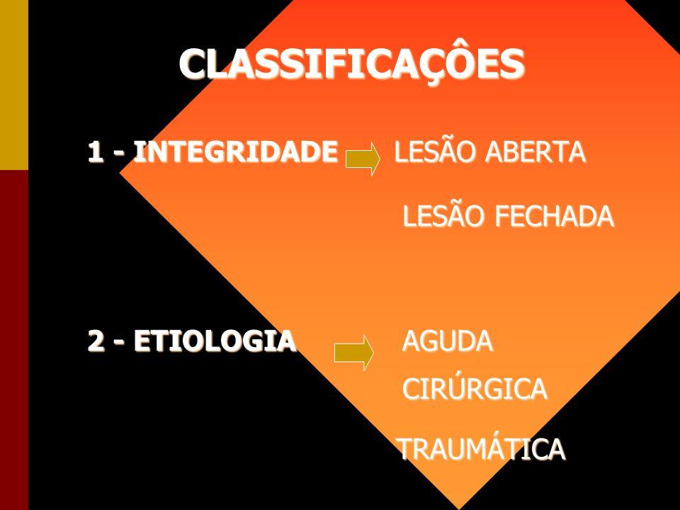 CLASSIFICAÇÔES 1 - INTEGRIDADE LESÃO ABERTA LESÃO FECHADA