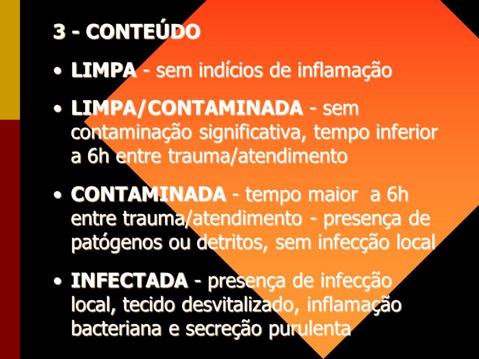3 - CONTEÚDO LIMPA - sem indícios de inflamação.