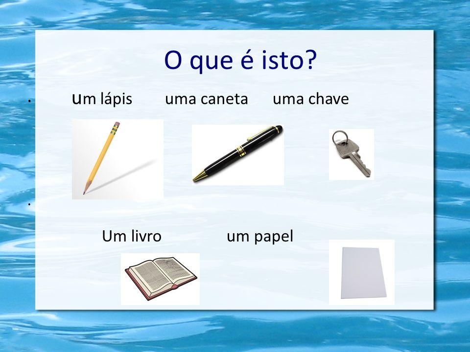 O que é isto um lápis uma caneta uma chave Um livro um papel