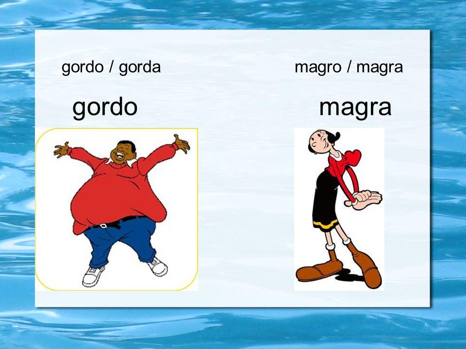 gordo / gorda magro / magra