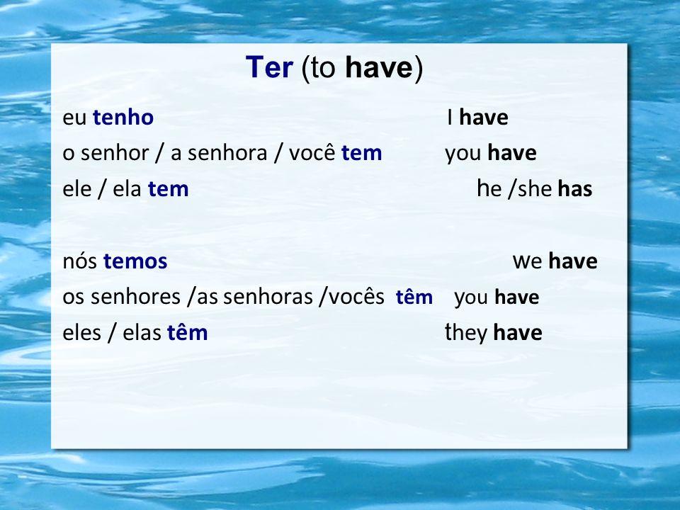 Ter (to have) eu tenho I have o senhor / a senhora / você tem you have