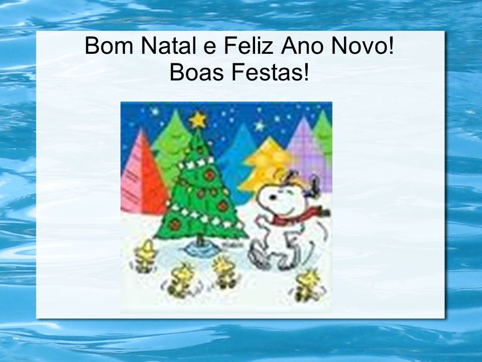 Bom Natal e Feliz Ano Novo! Boas Festas!