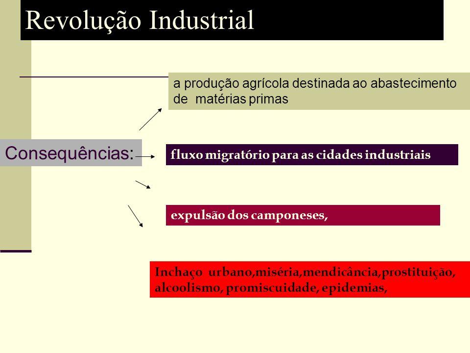 Revolução Industrial Consequências: