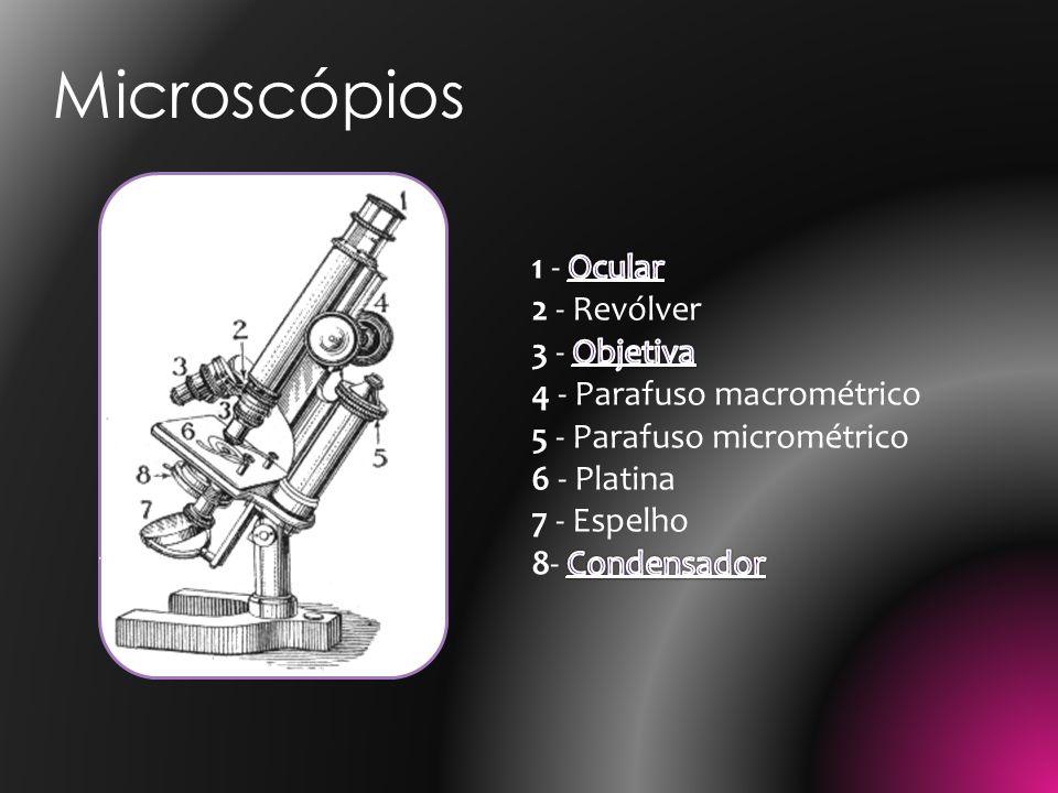 Microscópios 1 - Ocular 2 - Revólver 3 - Objetiva