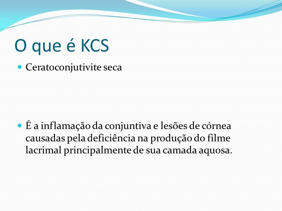O que é KCS Ceratoconjutivite seca