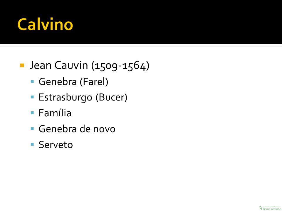 Calvino Jean Cauvin (1509-1564) Genebra (Farel) Estrasburgo (Bucer)