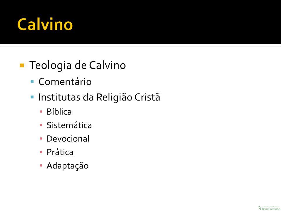 Calvino Teologia de Calvino Comentário Institutas da Religião Cristã