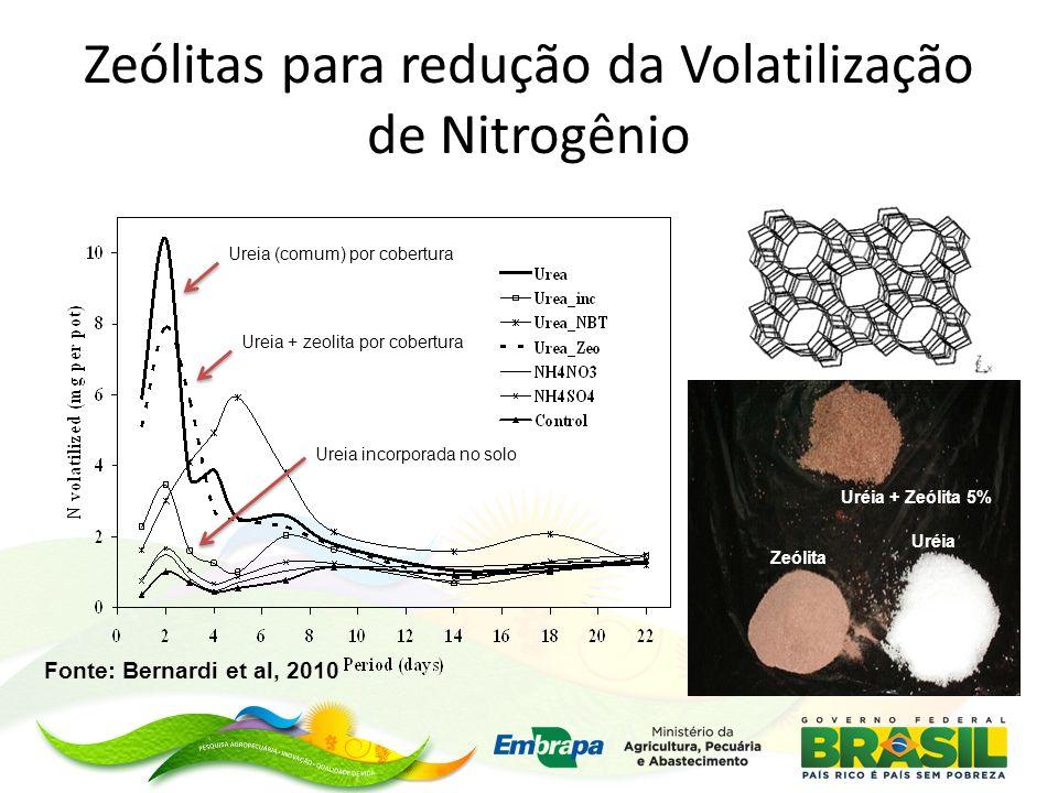 Zeólitas para redução da Volatilização de Nitrogênio
