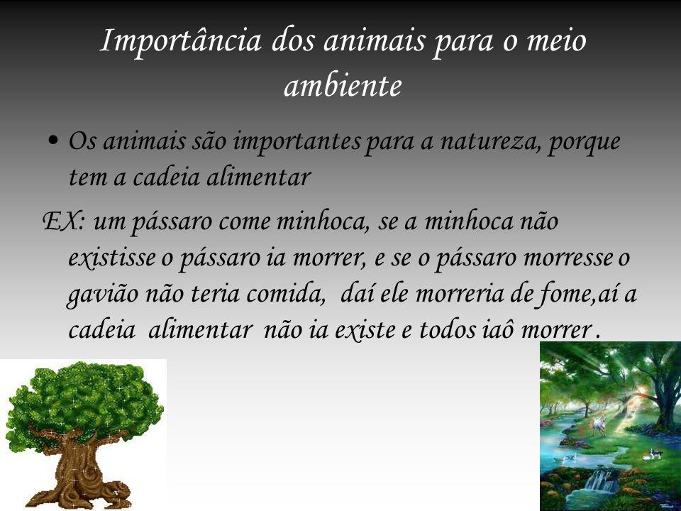 Importância dos animais para o meio ambiente