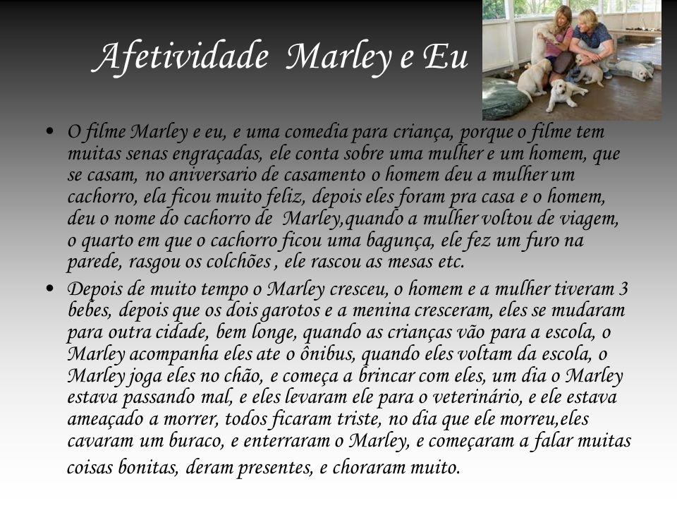 Afetividade Marley e Eu