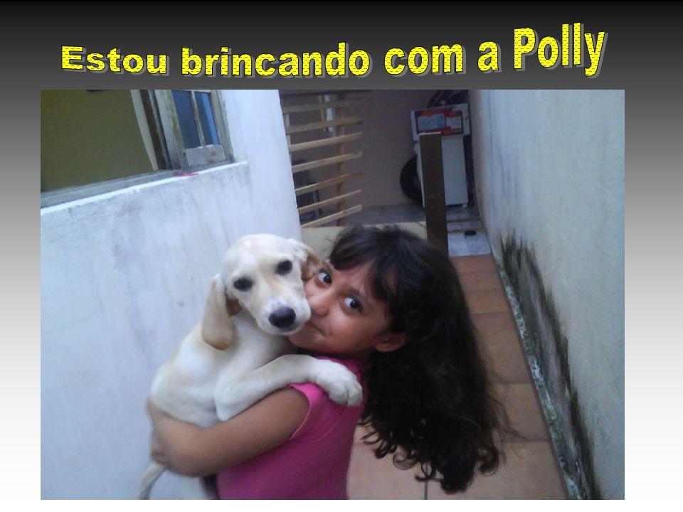 Estou brincando com a Polly