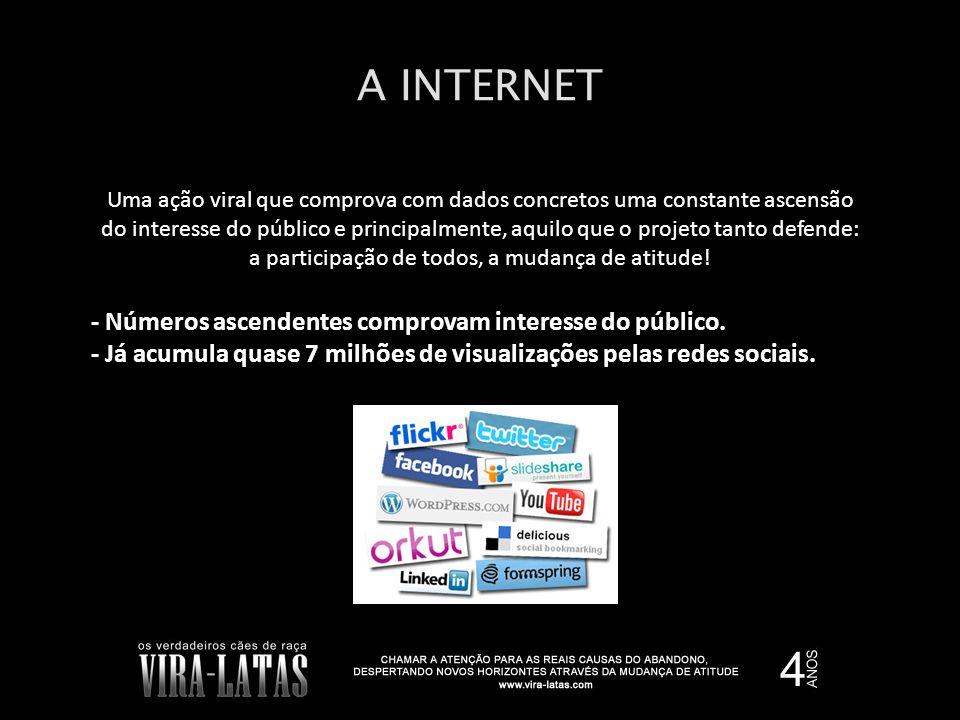 A INTERNET - Números ascendentes comprovam interesse do público.
