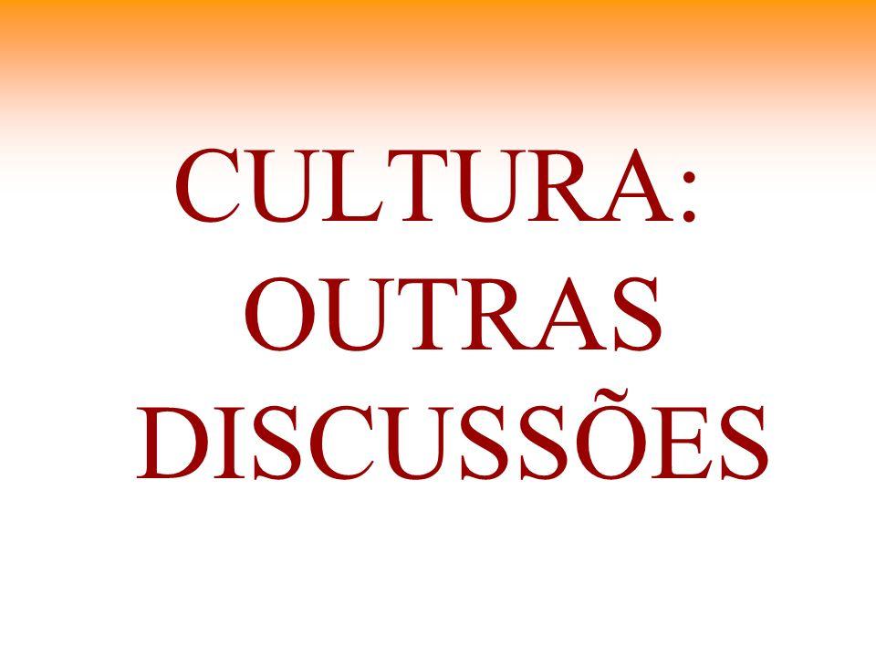CULTURA: OUTRAS DISCUSSÕES