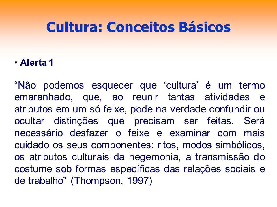 Cultura: Conceitos Básicos