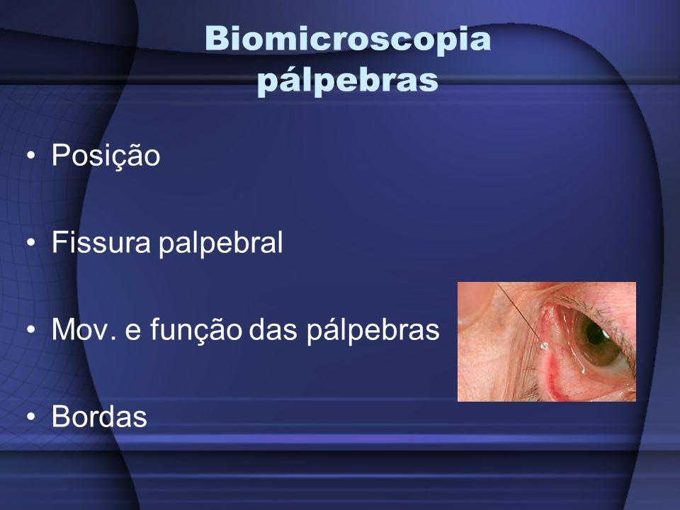 Biomicroscopia pálpebras