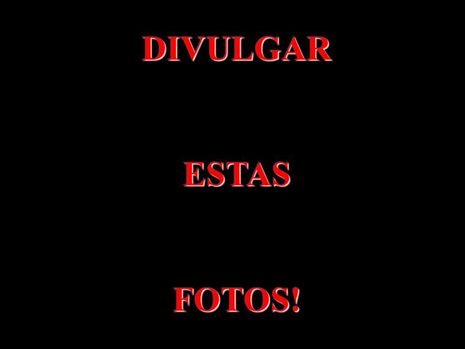 DIVULGAR ESTAS FOTOS!