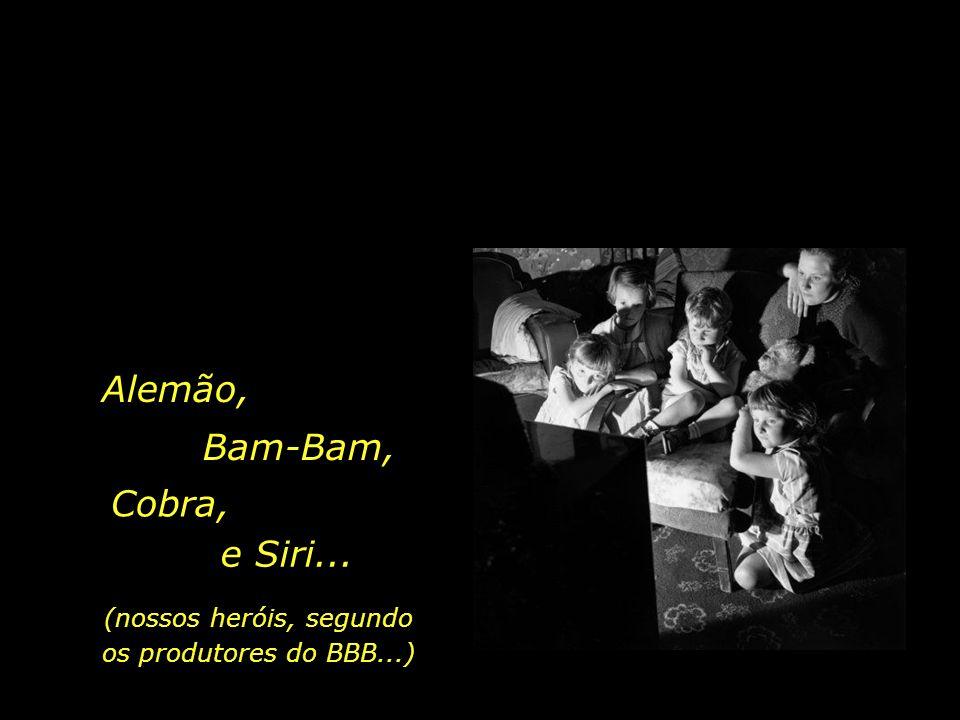 (nossos heróis, segundo os produtores do BBB...)