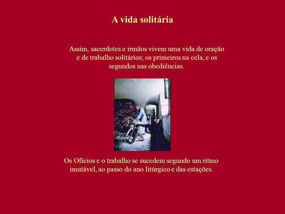 A vida solitária Assim, sacerdotes e irmãos vivem uma vida de oração e de trabalho solitários; os primeiros na cela, e os segundos nas obediências.