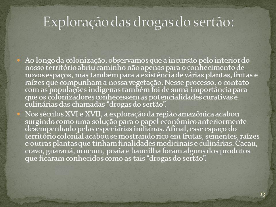 Exploração das drogas do sertão: