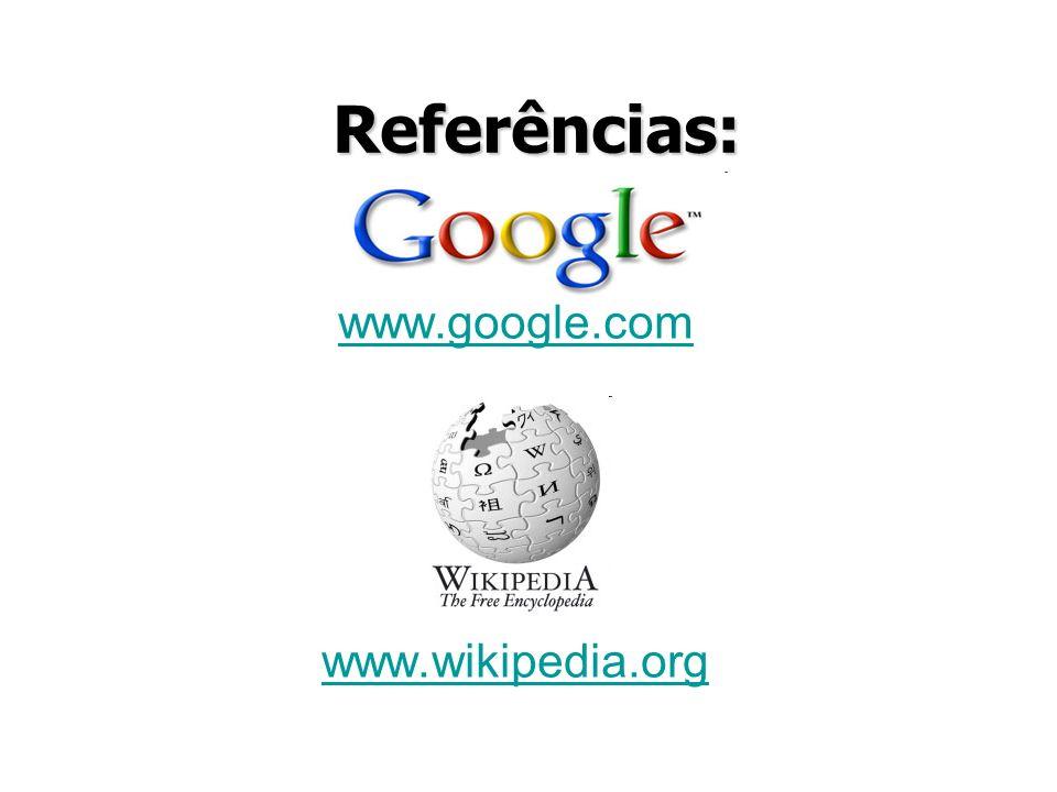 www.google.com www.wikipedia.org