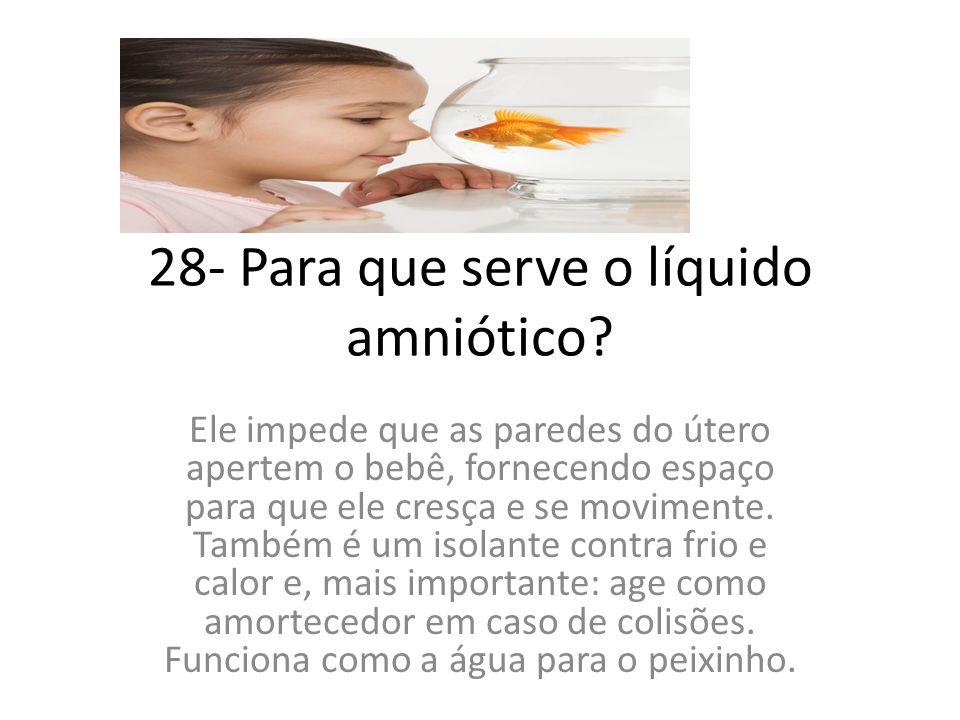 28- Para que serve o líquido amniótico