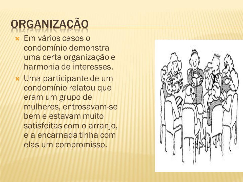 OrganizaçÃo Em vários casos o condomínio demonstra uma certa organização e harmonia de interesses.