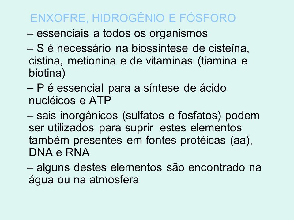 ENXOFRE, HIDROGÊNIO E FÓSFORO