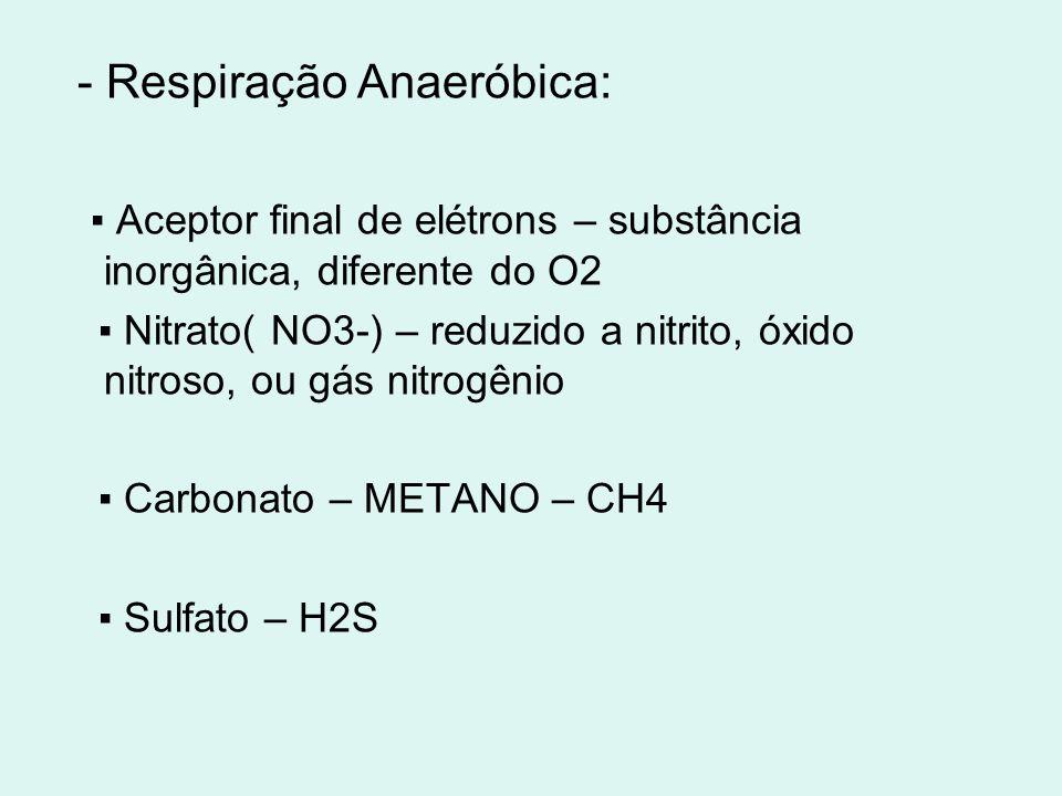 - Respiração Anaeróbica: