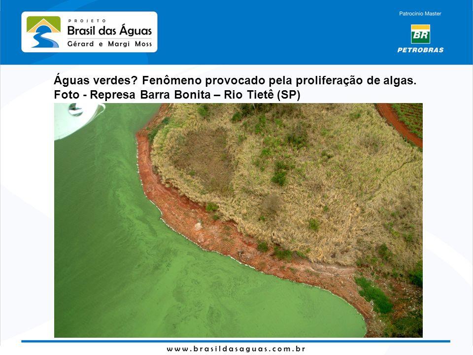Águas verdes Fenômeno provocado pela proliferação de algas.