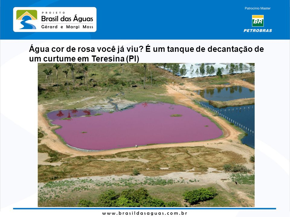 Água cor de rosa você já viu