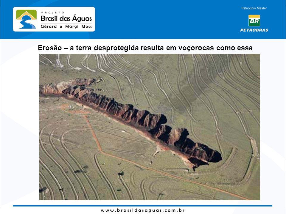 Erosão – a terra desprotegida resulta em voçorocas como essa