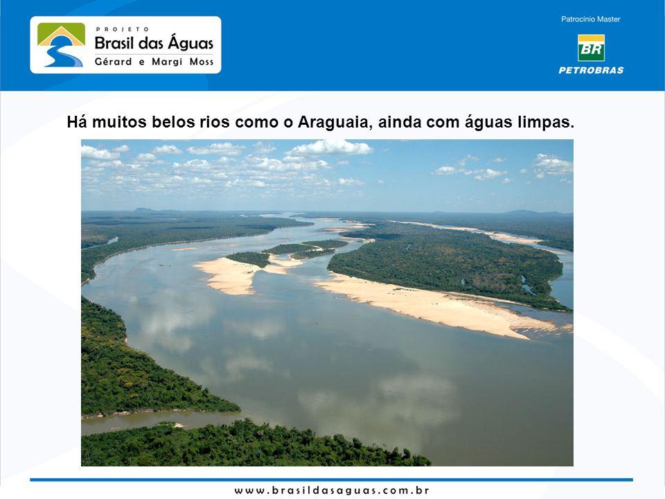 Há muitos belos rios como o Araguaia, ainda com águas limpas.