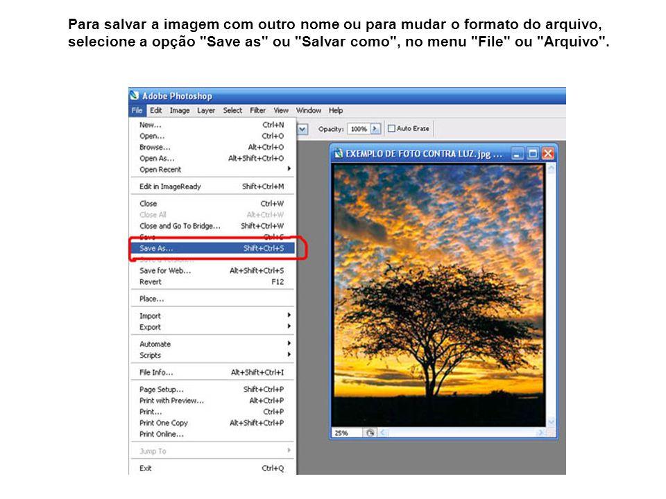 Para salvar a imagem com outro nome ou para mudar o formato do arquivo, selecione a opção Save as ou Salvar como , no menu File ou Arquivo .