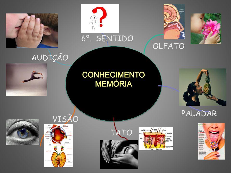 6º. SENTIDO OLFATO CONHECIMENTO MEMÓRIA AUDIÇÃO PALADAR VISÃO TATO