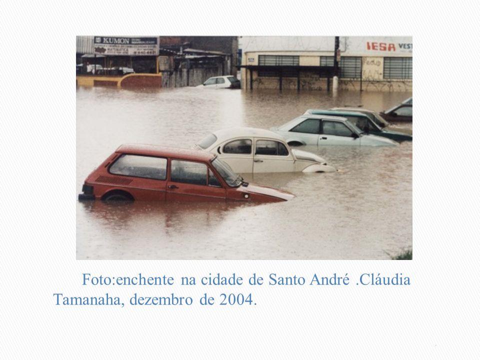 Foto:enchente na cidade de Santo André