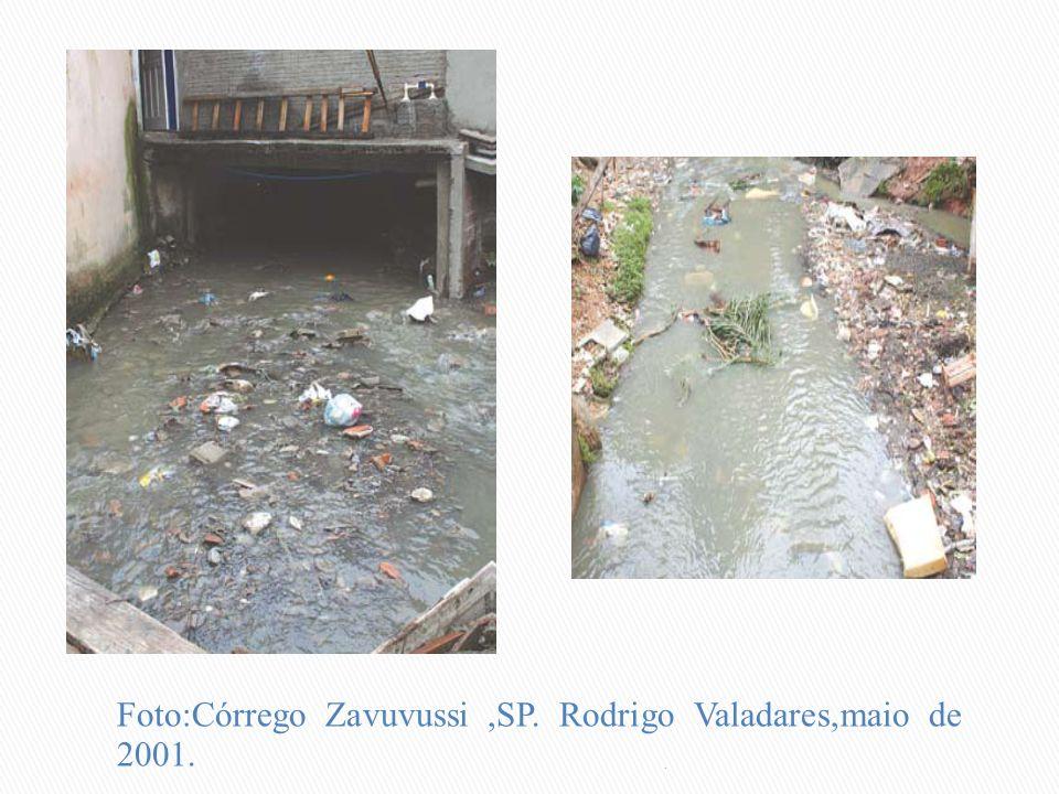 Foto:Córrego Zavuvussi ,SP. Rodrigo Valadares,maio de 2001.