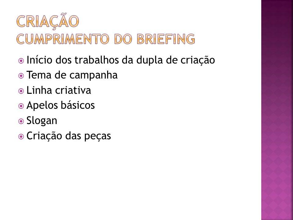 CRIAÇÃO CUMPRIMENTO DO BRIEFING