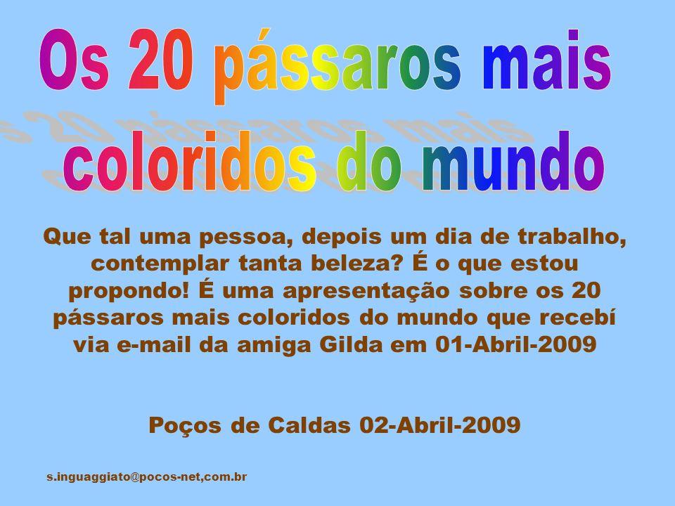 Poços de Caldas 02-Abril-2009