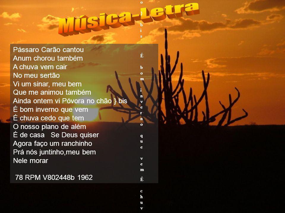 Música-Letra Pássaro Carão cantou Anum chorou também A chuva vem cair