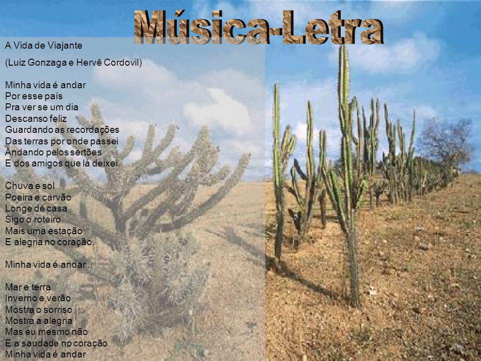 Música-Letra A Vida de Viajante