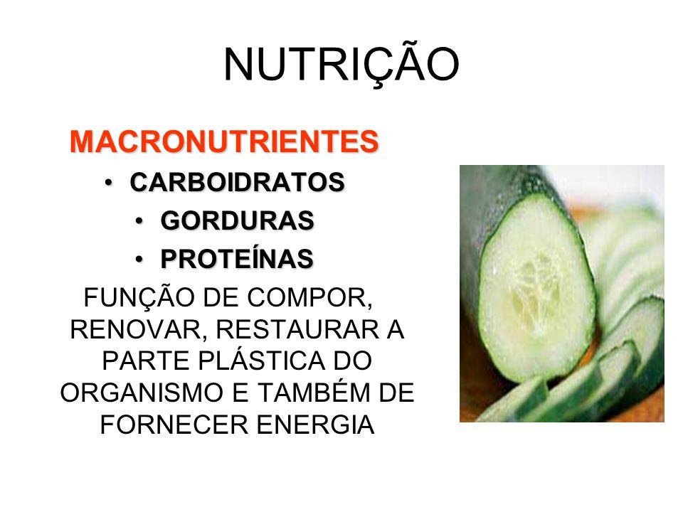 NUTRIÇÃO MACRONUTRIENTES CARBOIDRATOS GORDURAS PROTEÍNAS
