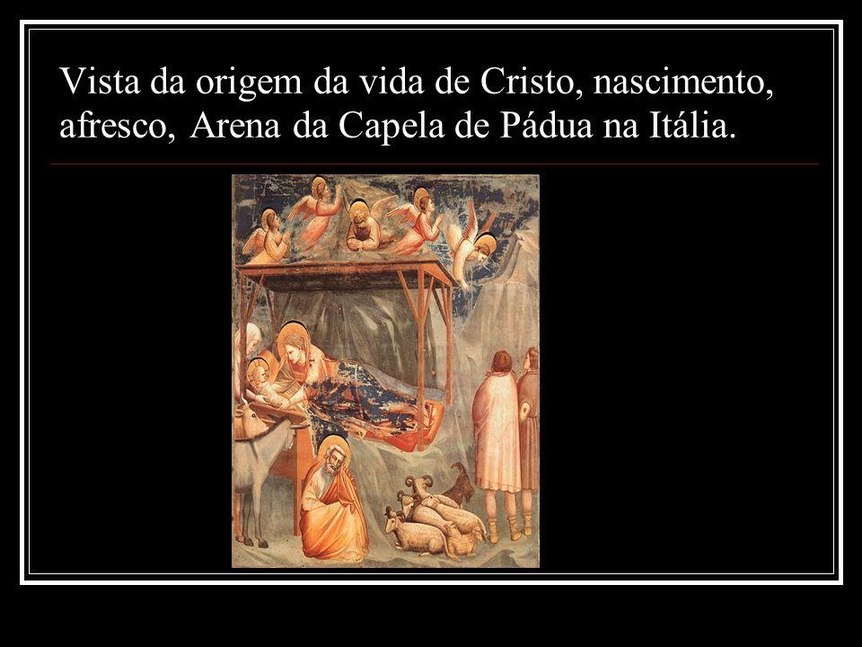Vista da origem da vida de Cristo, nascimento, afresco, Arena da Capela de Pádua na Itália.