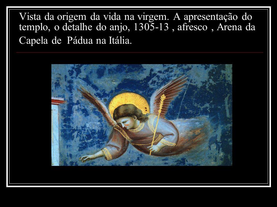 Vista da origem da vida na virgem