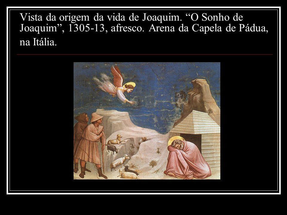 Vista da origem da vida de Joaquim